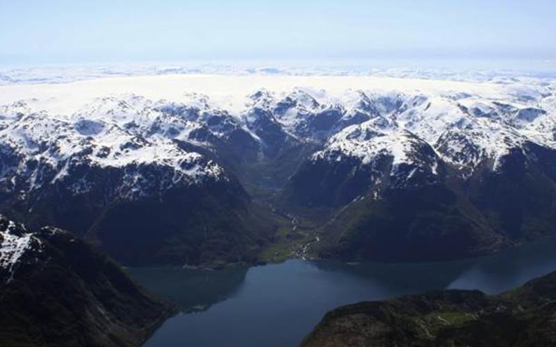 FjordTrout