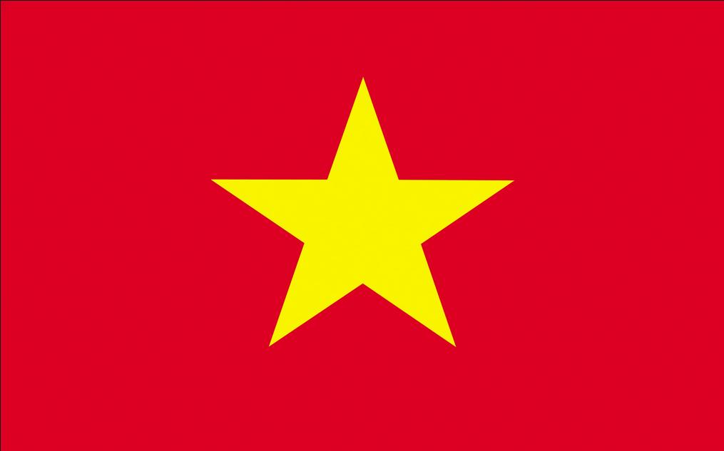 vietflag